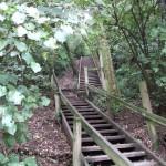 Bledisloe_Park_Stairs