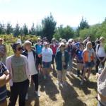 vineyard-walk-mwf