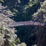 Rangi-wooden-bridge