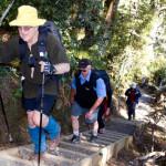 Rangiwahia-track-pounding-steps