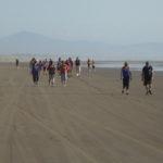 Twilight Beach Walk (1) www.ManawatuNZ.co.nz