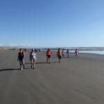 Twilight Beach Walk www.ManawatuNZ.co.nz