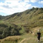 ridge top farm walk -