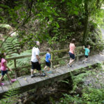 Walking in Te Apiti - Manawatu Gorge - Credit www.ManawatuNZ.co.nz